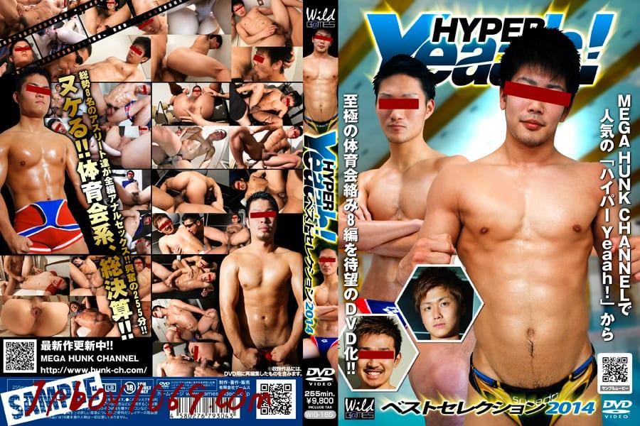 GMS431 [2 DVD]